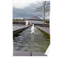 Water features Poster