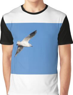 Seagull in flight  Graphic T-Shirt