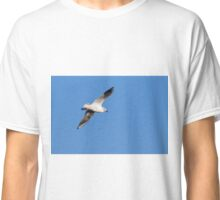 Seagull in flight  Classic T-Shirt