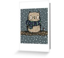 Chilly Owl Greeting Card