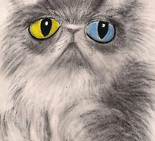 Calypso the Persian Cat - oddeyed by InkyDreamz