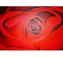 Heart Shaped Valentine Red Rose Photographic Print