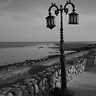 Lonely Lampost by KerryPurnell