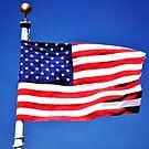 American Flag by Luke Donegan
