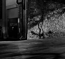 Explore the night # 2 by sedge808