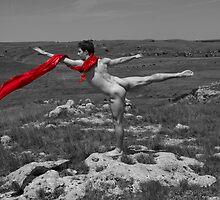 16437bw Prairie Dancer by PrairieVisions
