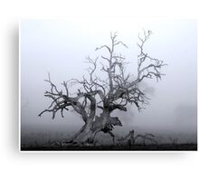 CTAPOE DEPEBO B TYMAHE (Old Tree in the Mist) Canvas Print