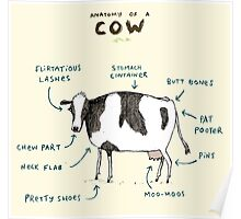 Anatomy of a Cow Poster