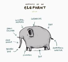 Anatomy of an Elephant Baby Tee