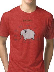 Anatomy of an Elephant Tri-blend T-Shirt