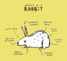 Anatomy of a Rabbit Kids Tee