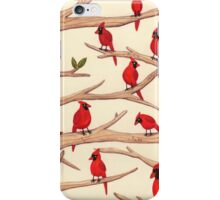 Cardinals iPhone Case/Skin