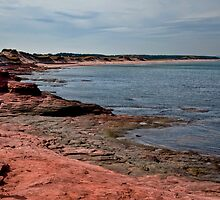The Shore at Cavendish, PEI by Gerda Grice