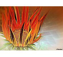Fire Dance Photographic Print