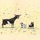 A Doe & Her Kids by Sophie Corrigan