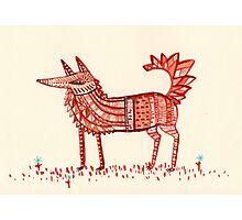 Aztec Fox Photographic Print