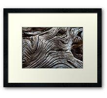 Wood Freak 2 Framed Print