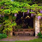 My Secret Garden - Van Dusen Botanical Gardens - Vancouver, BC by Kathryn  Young