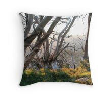 Above the Snow line. Throw Pillow