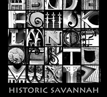 Savannah Alphabet - Black and White by Ellen  Hagan