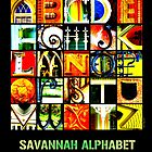 Savannah Alphabet - Bright by Ellen  Hagan