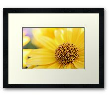 Picture in Picture Framed Print