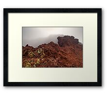 Life on the Rim Framed Print