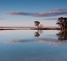 """""""Still Waters"""" by Heather Thorning"""