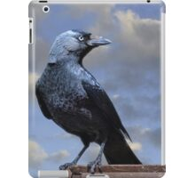 Majestic Jackdaw. iPad Case/Skin