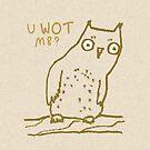 Confused Owl by Sophie Corrigan