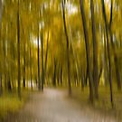 Forrest in Motion, Moscow (yellow) by KUJO-Photo