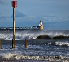 Windswept seascape by Violaman