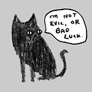 Black Cats Aren't Evil by Sophie Corrigan