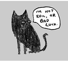Black Cats Aren't Evil Photographic Print