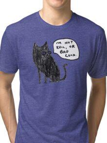 Black Cats Aren't Evil Tri-blend T-Shirt