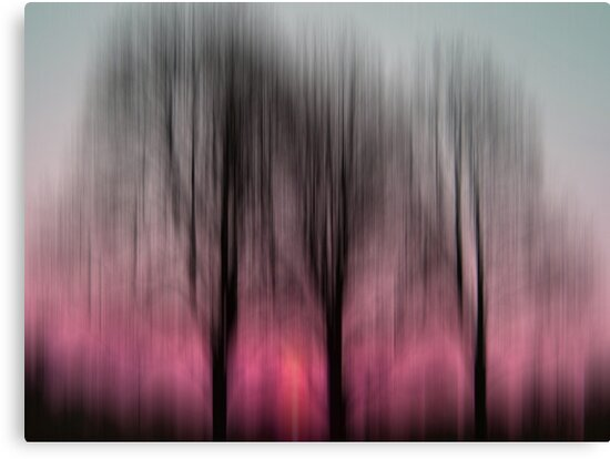 Three Trees in Motion - pink by KUJO-Photo