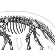 Camarasaurus - Dinosaur Sticker