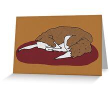 Sleeping Collie Greeting Card