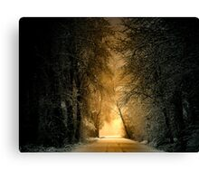 His Glory Canvas Print