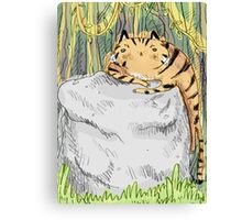 Lazy Tiger Canvas Print