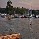 Sunset on Shenango Lake by Sandra Lee Woods