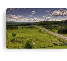 Countryside 2 Canvas Print