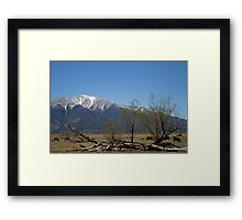 The Hanging Tree Framed Print