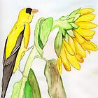 Yellow Bird & a Sunflower by Anne Gitto
