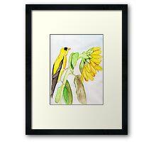 Yellow Bird & a Sunflower Framed Print