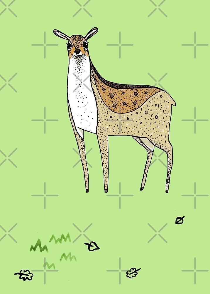 Deer by Sophie Corrigan