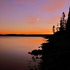 Setting Moon At Dusk Over Yellowstone Lake by Stephen Vecchiotti