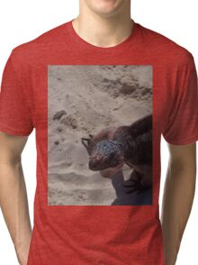 Iguana In The Sand Tri-blend T-Shirt