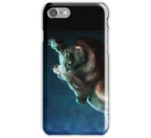 Deliverance iPhone Case/Skin
