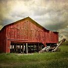 A Red Barn by vigor